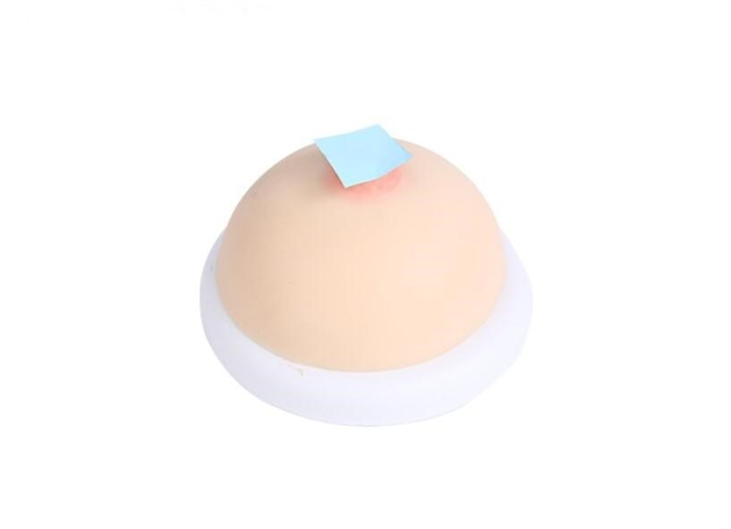 Female silicone breast model homemaking nurse training medical breast prolactin division teaching fake breast prosthesis education sets of breast stimulation teaching tools for breast feeding of female breast model of fake breast prosthesis
