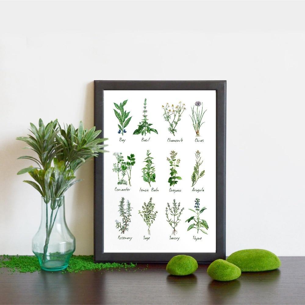 Casa decoração da lona impressão hd nórdico cartaz botânico gráfico ervas e especiarias pintura parede arte clássica sala de estar modular imagem