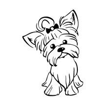 Autocollant de voiture, Yorkshire, Terrier, chiot, chien Yorkshire, mignon, chien, fenêtre, Automobiles, accessoires dextérieur, autocollants en vinyle