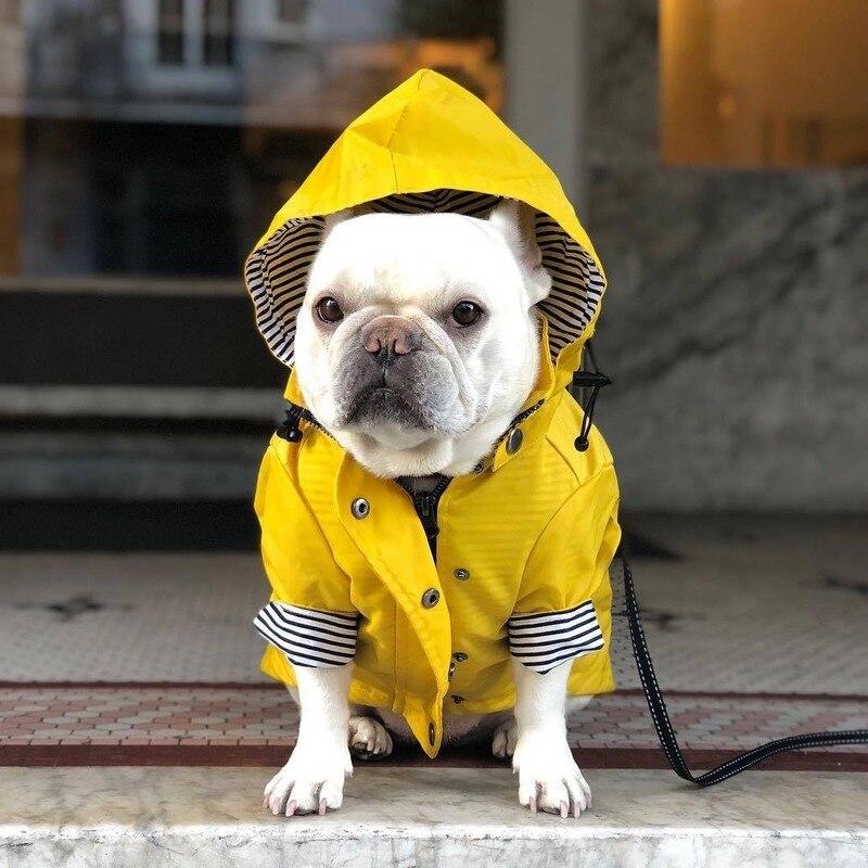 Ropa De Perro grande Para Perro, chaqueta Dla Psa Para mascota, Abrigo...