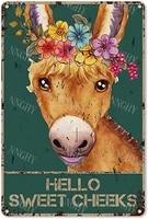 Citation drole de salle de bain en metal  signe en etain  decor mural Vintage Hello Sweet Cheeks ane avec fleurs  signe en etain pour lavage des toilettes