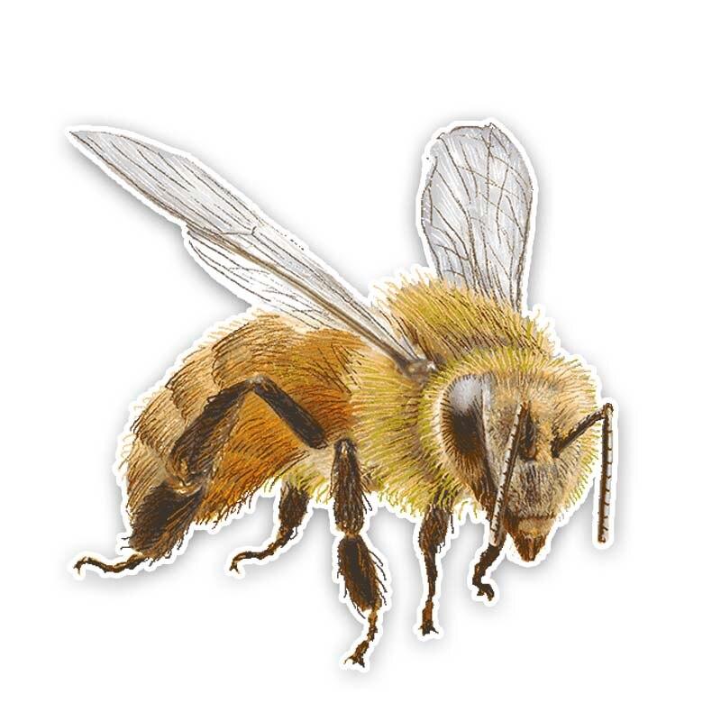 Автомобильная наклейка, мультяшная креативная пчела ПВХ водонепроницаемая Солнцезащитная Автомобильная наклейка 14 см * 14,1 см