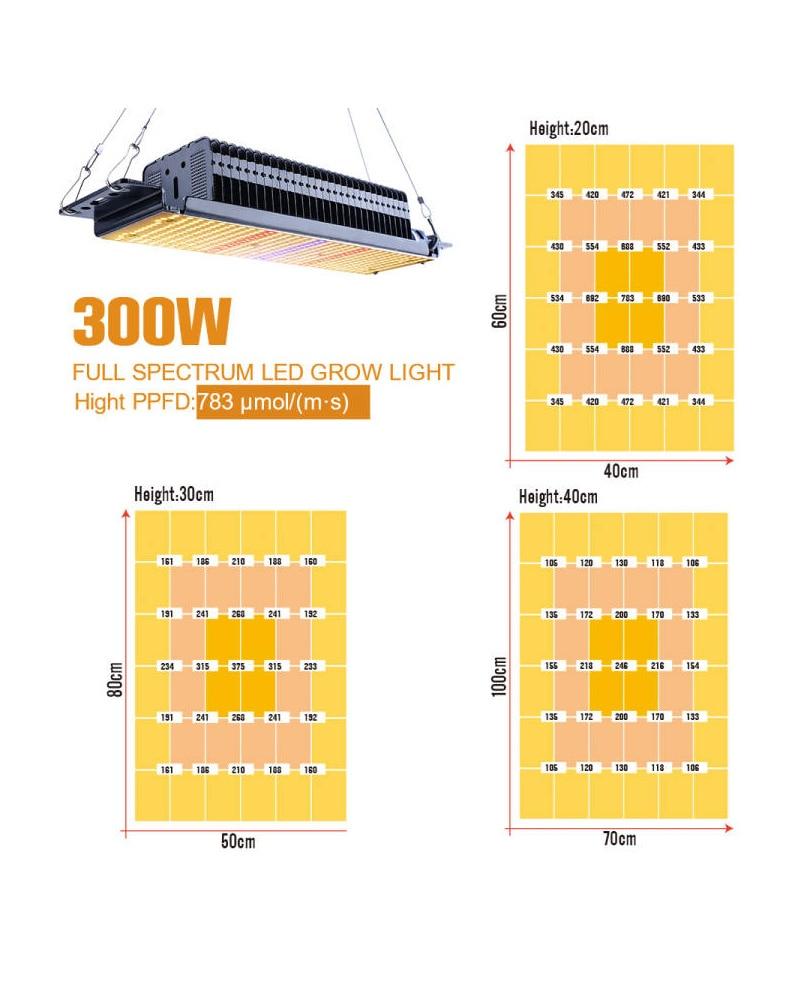 2Pcs Full Spectrum LED Grow Lights 465Leds 300W Phytolamp For Plants Hydroponics Seedling Growth Lamp Tent Box 85-265V Warm enlarge