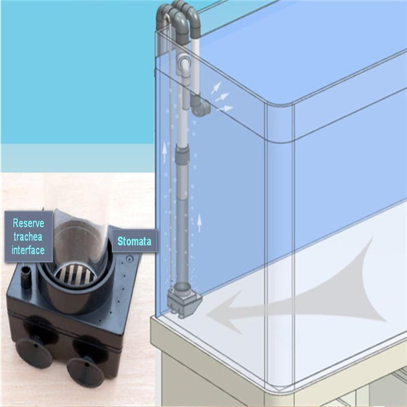 جديد نموذج لا حفر حفرة غير مثقب مستنقع أسفل تصفية لا حاجة حفرة سيفون تجاوز ل الطازجة البحرية الأسماك الاستوائية خزان