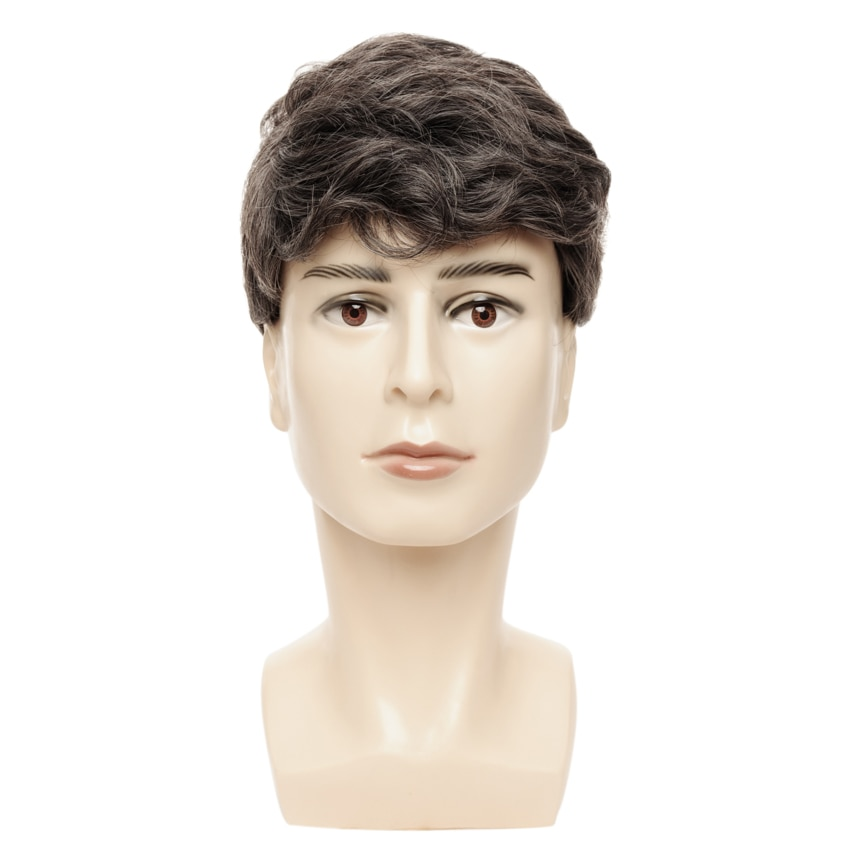 Wavy Man Wigs Short Hair Wigs for Men Toupee High Temperature Fiber Synthetic Hair Mixed Color For Business Men