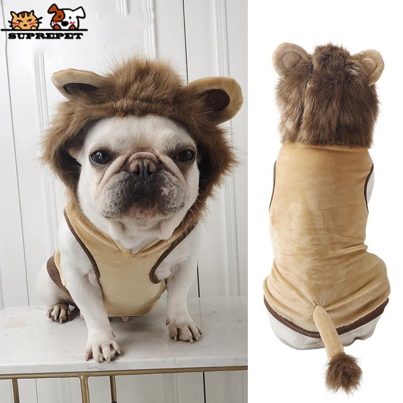 SUPREPET Nette Haustier Hund Kleidung für Französisch Bulldog Cosplay Lion Hund Katze Kostüm Mode Welpen Kleidung Hund Kleidung Cartoon Hund mops