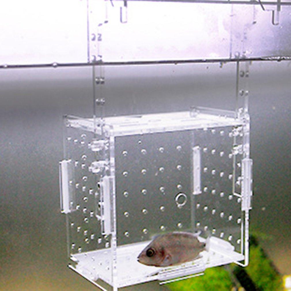 Aquarium Transparent Aquarium Fish Fry Incubator Breeding Box Production Box Single And Double Grid Isolation Network