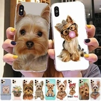 toplbpcs yorkshire terrier dog newest fashion phone case for iphone 8 7 6 6s plus x 5s se 2020 xr 11 12 pro xs max