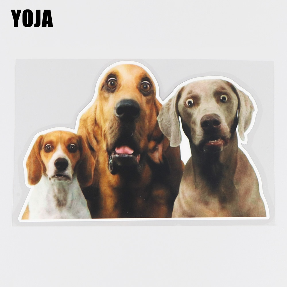 YOJA 17.9×11.4CM Three Terrifying Dogs Bumper Decoration Funny Car Stickers Accessories 19B-0038