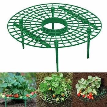 Стойка для растений, для выращивания растений, инструмент для гидропонного выращивания растений