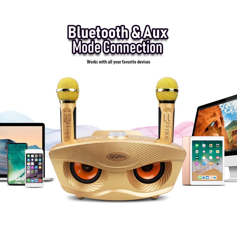 Sistema de Karaoke familiar qq-mic portátil dos micrófonos inalámbricos con 20w estéreo Bluetooth altavoz condensador Karaoke micrófono