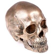 1 шт Хэллоуин бронзовая модель черепа из полимера скульптура статуя ремесла украшение дома картина медицинская модель