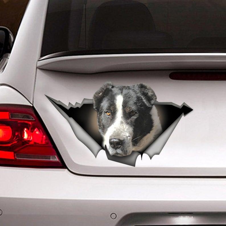 Calcomanía blanca y negra para coche, adhesivo de Pet, para perro, color...