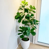 55 122cm tropical plants large artificial ficus tree branch real touch banyan tree fake palm leaves for home garden office decor