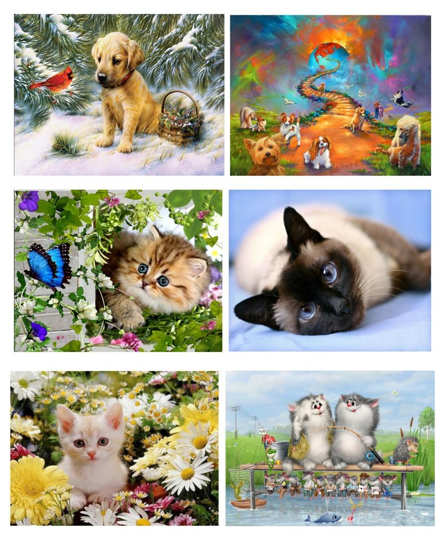 5D DIY pintura de diamante gatito lindo perrito Urraca mariposa crisantemo gatito Animal bordado punto de cruz decoración del hogar