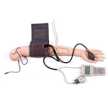 Advanced Arm Blood Pressure Measurement Training Simulator Nursing Model For Patient Education And Teaching