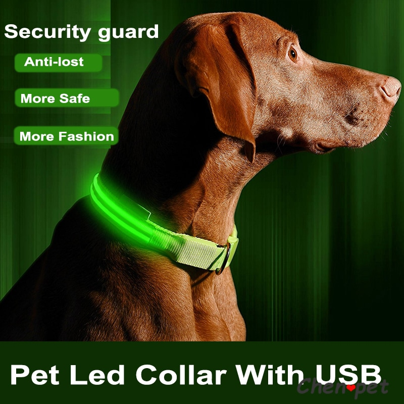 1pc USB Charging Led Dog Collar Anti-Lost/Avoid Car Accident Collar For Dogs Puppies Dog Collars Leads LED Supplies Pet Products