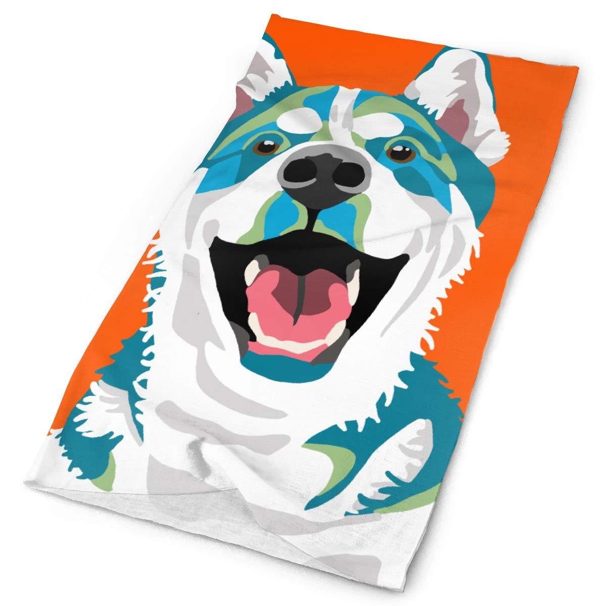 SHINYWEET las mujeres hombres Pitbull cuello de perro polaina de sombreros de cinta para la cabeza, mascara facial Bandana sin costuras 16-en-1 bufanda mágica Multi