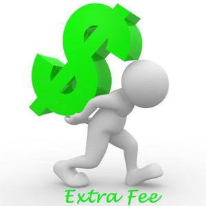 Additional Pay on Your Order: for Freight / Better Quality / Your special requirement and other fee as our agreement