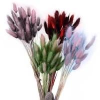 Bouquet de fleurs naturelles sechees Lagurus Ovatus  30 pieces  degrade  bricolage decoration de mariage  maison  noel  queue de lapin  herbe