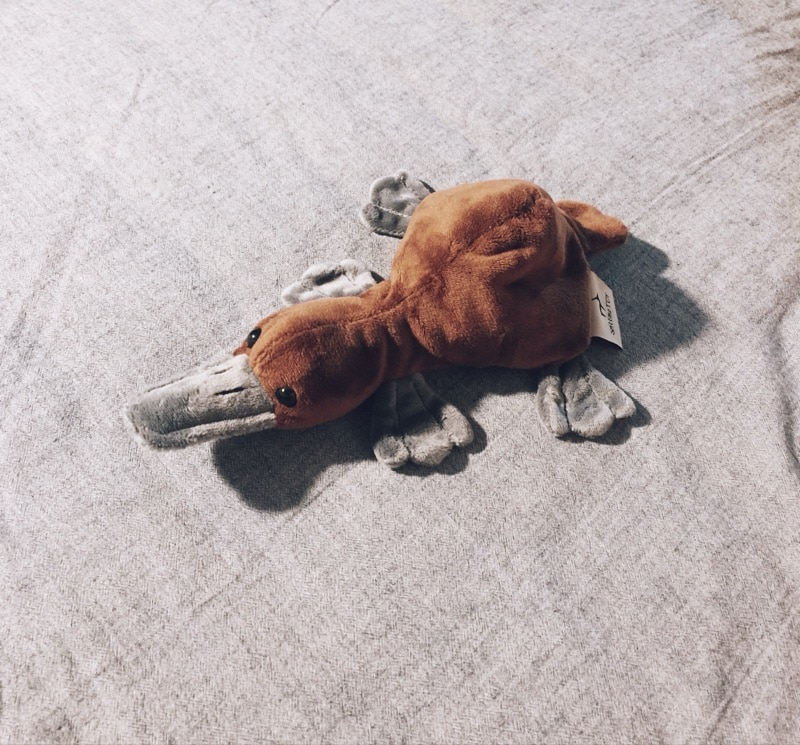 Маленькая кукла «Утконос» Имитация животных плюшевые игрушки