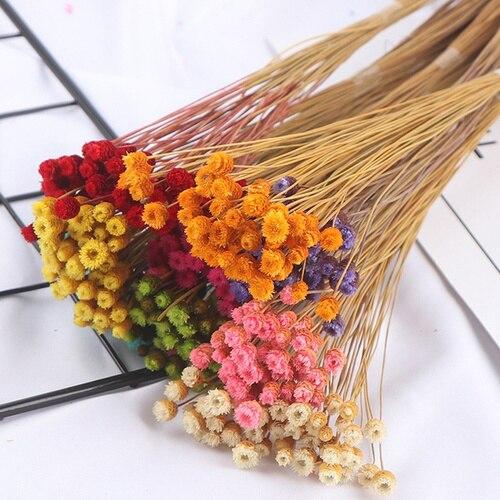 50pcs / lot Happy Flower Natural Dried Bouquet Home Decoration Real Diy Arrangement Shooting Props
