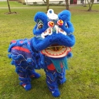 handmade blue lion dance mascot costume wool southern lion chinese folk art two adults party game advertising cosplay clothing