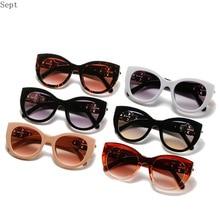 Cat Eye Round Sunglasses  Luxury Brand Designer Eyewear Women Men Fashion Gray Gradient Lens Eyeglas