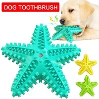 dog toys pet molar tooth cleaner brushing stick starfish dogs chew trainging doggy dental care toothbrush pet puppies non toxic