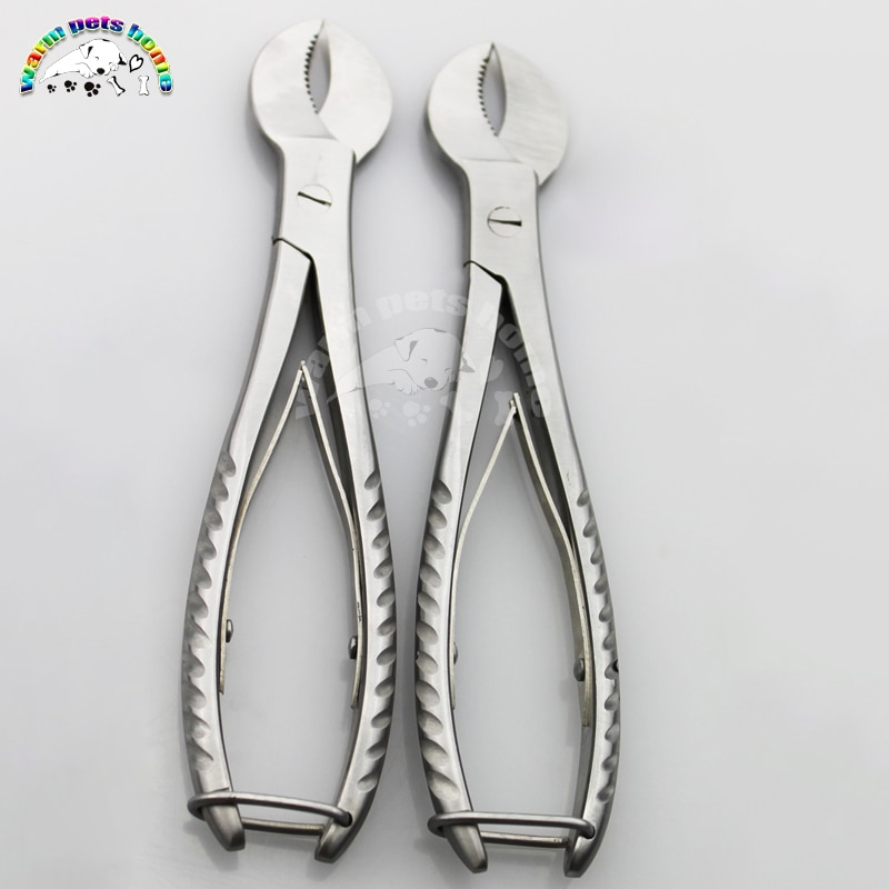 Dental Plaster Scissors Cutting Pliers Gypsum Shears 20cm Surgical Instruments Dental Laboratory Equ