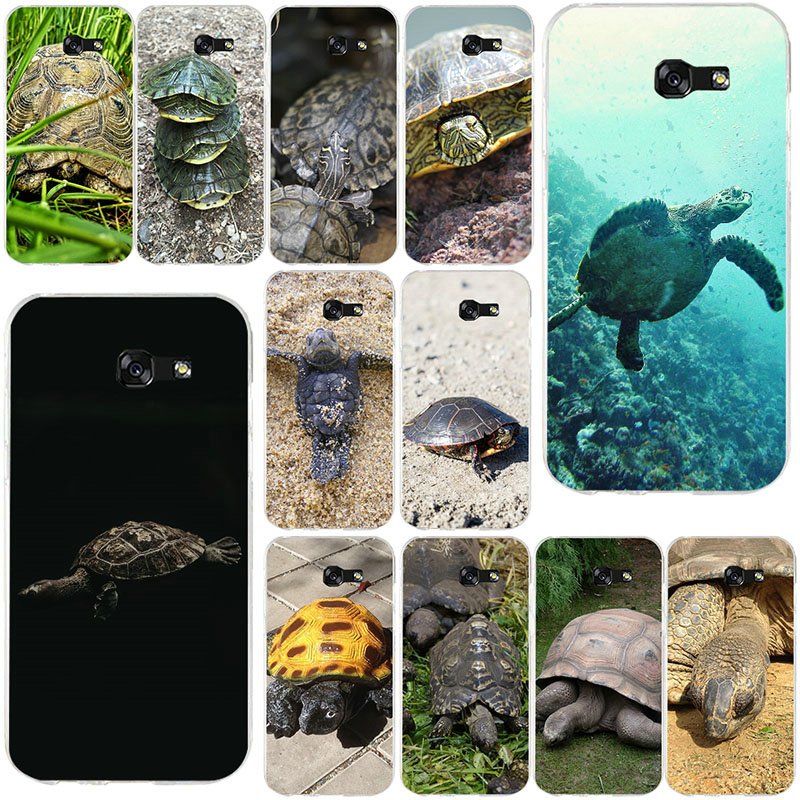 Beautiful Animal Wildlife Turtle Soft TPU Transparent Phone Cases For Samsung Galaxy J1 J2 J3 J5 J7 A3 A5 A7 2016 2017 Shell