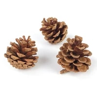 small animal chewing teeth toy pine cone rabbit pet teeth chewing toy rabbit chinchilla hamster and other pet snack toys 3pcs
