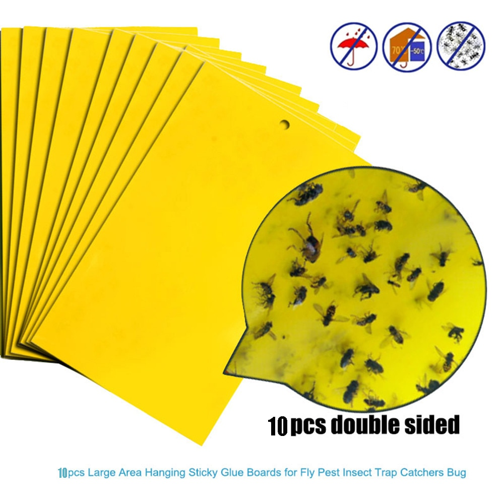 20/10/5pcs Strong Flies Traps Bugs Sticky Board Catching Aphid Insects Pest Killer Outdoor Fly Trap