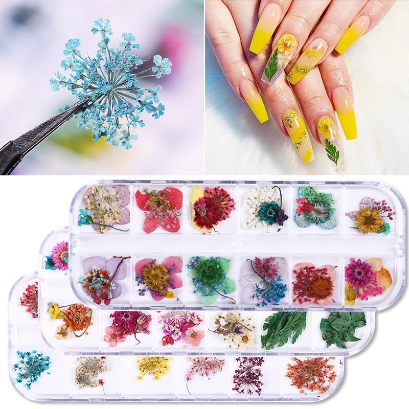 1 Box Nail Dried Flower Real Floral 3D Nail Art Decorations UV Gel Polish Natural Floral Sticker Slider Set Beauty