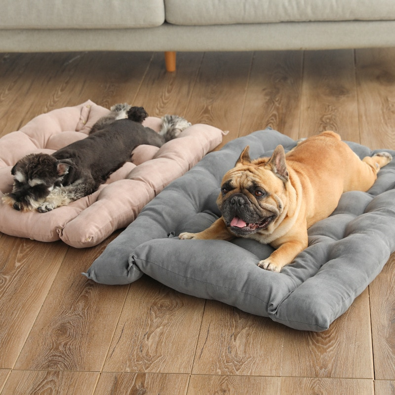 Cama plegable Para perro, sofá cama Para Perros medianos, cojín suave Para...