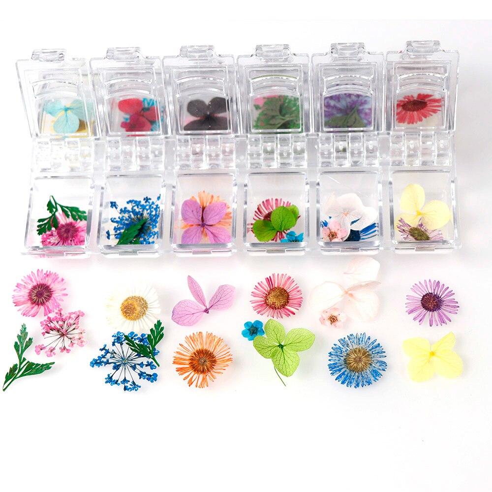 1 caja de Plantas secas de flores de margaritas secas reales para colgante de resina epoxi, collar para hacer joyería, molde de resina epoxi para rellenar DIY Nail Art