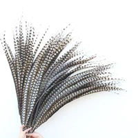 wholesale 40 110cm16 44 inch natural pheasant tail feathers wedding decorations lady amherst pheasant feathers diy plume