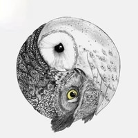 fashion animal car sticker lovely owl tai chi modeling auto accessories pvc decal for chevrolet volkswagen polo golf11cm13cm