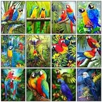 diamond painting animals full square 5d diy diamond embroidery bird rhinestones mosaic parrot cross stitch home decor
