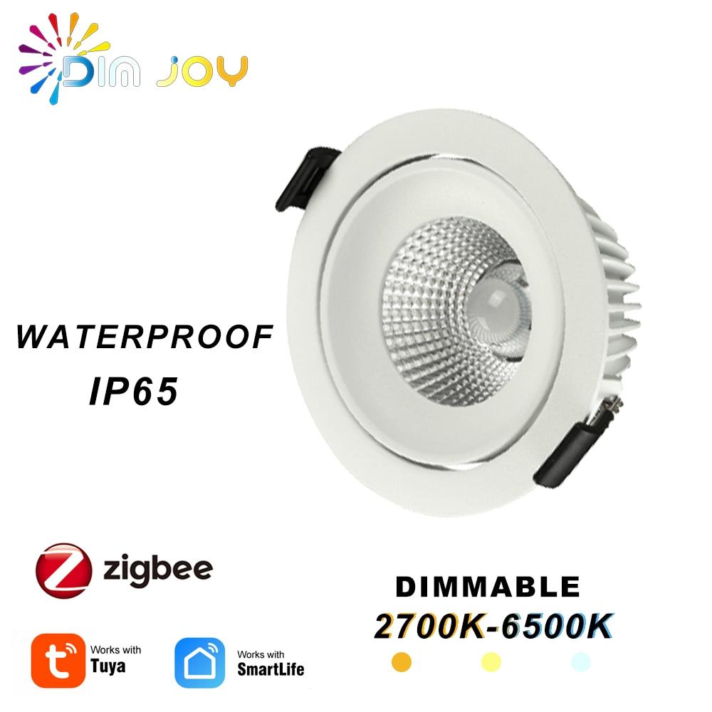 Tuya الذكية مصابيح كشاف صغيرة الحجم غرفة المعيشة عالية الجودة الأضواء مصباح IP65 للخارجية النازل عكس الضوء زيجبي Led النازل