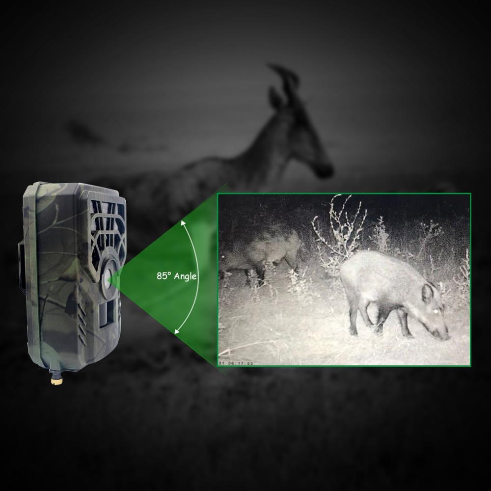 Telecamera da pista per la caccia telecamera per la fauna selvatica 940nm retroilluminazione visione notturna 5MP