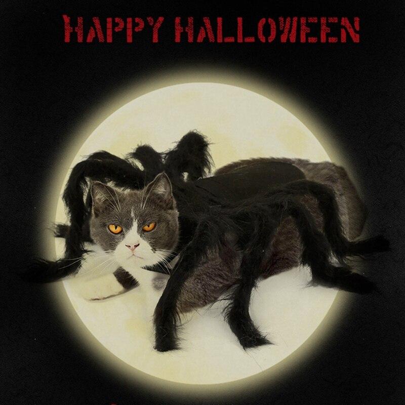 Vêtements de carnaval dhalloween en forme daraignée   Décor de Festival pour chiens et chats, déguisement de fête noir, déguisement en peluche daraignée et de Simulation, 2020