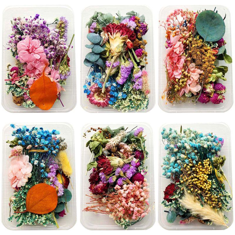 1Box Kristall Epoxy Füllstoff Trockenen Blume Gemischt Nagel Aufkleber Dekorationen DIY Handwerk F3MF