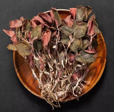 أصيلة البرية جين ليان شيان المجففة Anoectochilus Roxburghii