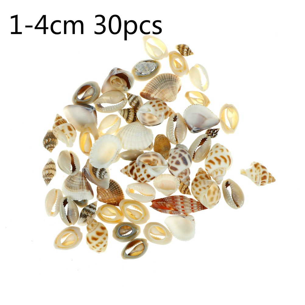 Фото - 1-4cm 20/30pcs/lot Natural Conch Shells Mini Conch Corn Screw Wall Decoration DIY Aquarium Landscape Seashells Coastal Decor декор legend seashells 20 45 336763 73 44