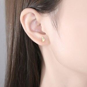 V-375 s925 sterling silver Korean version earrings micro-diamond zircon earrings creative earrings women wholesale