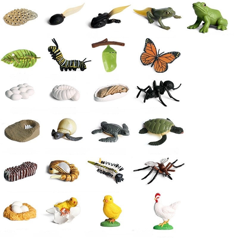 Модель моделирования детского сада с циклом роста, ПВХ экшн-фигурки животных для детского сада, игрушка, рождественские подарки для детей
