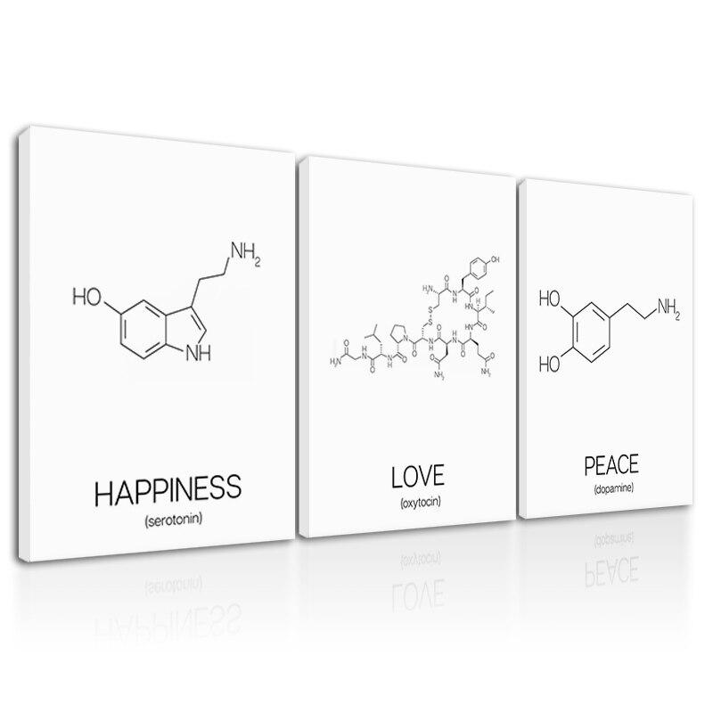 Paz amor felicidad decoración pintura en lona foto moléculas enmarcado pared arte listo para colgar molécula cartel química Decoración