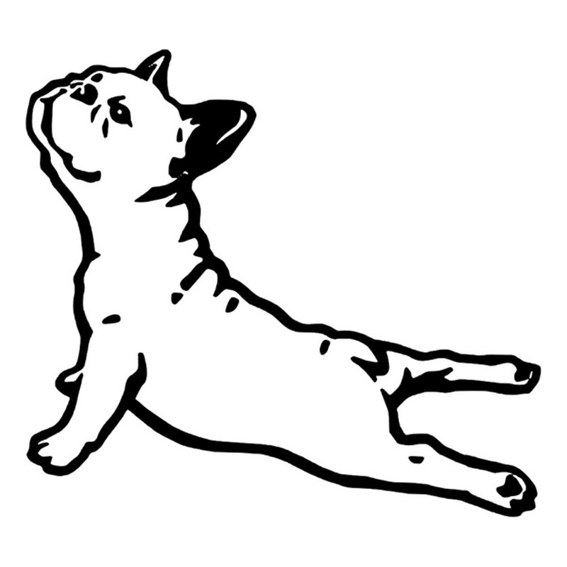 Funny Bulldog France Animal Car Sticker Pet Dog Cartoon Styling Creative Decal Waterproof Accessories Vinyl,16cm*14cm