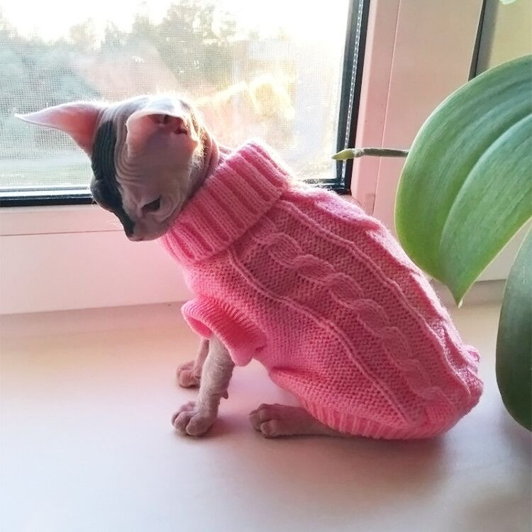Katze Kleidung Für Pet Katzen Kleidung Für Haustiere Weste Pullover Kleidung Für Katzen Kitty Baumwolle Reines T Shirt Kitty Hund mantel Westen Kostüm